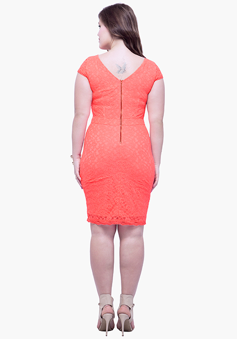 CURVE Lace Entice Bodycon Dress - Coral