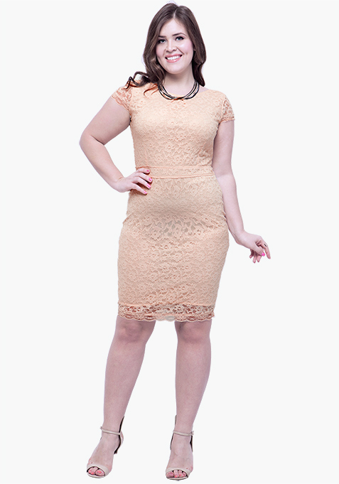CURVE Lace Entice Bodycon Dress - Beige